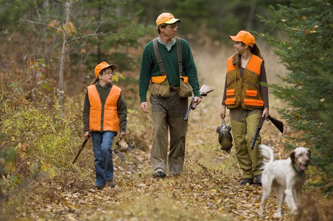 Michigan best grouse and woodcock hunting in the state for Michigan fishing license prices