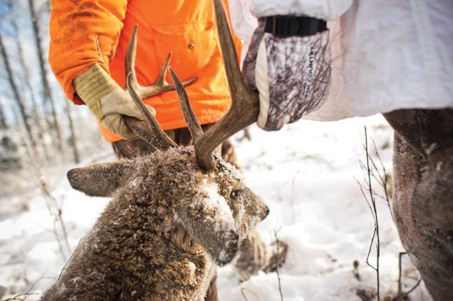 Southwest Deer Forecast