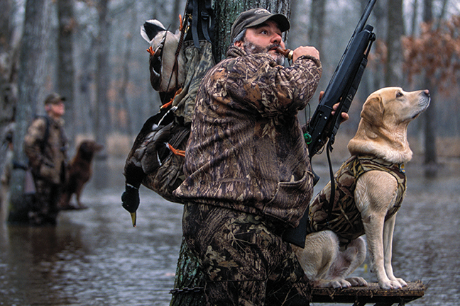 Duck Hunting Tips for Wary Waterfowl