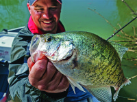 2017 Alabama crappie fishing forecast