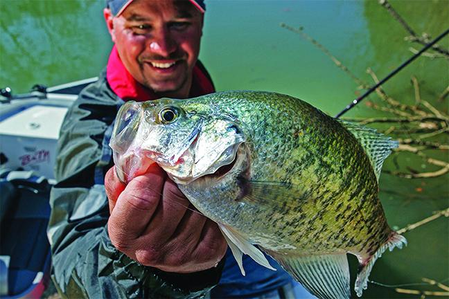 Alabama Crappie Fishing Forecast Spring 2017