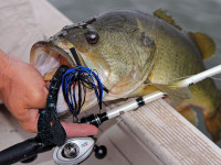 Americas Best Bass Fishing Lakes