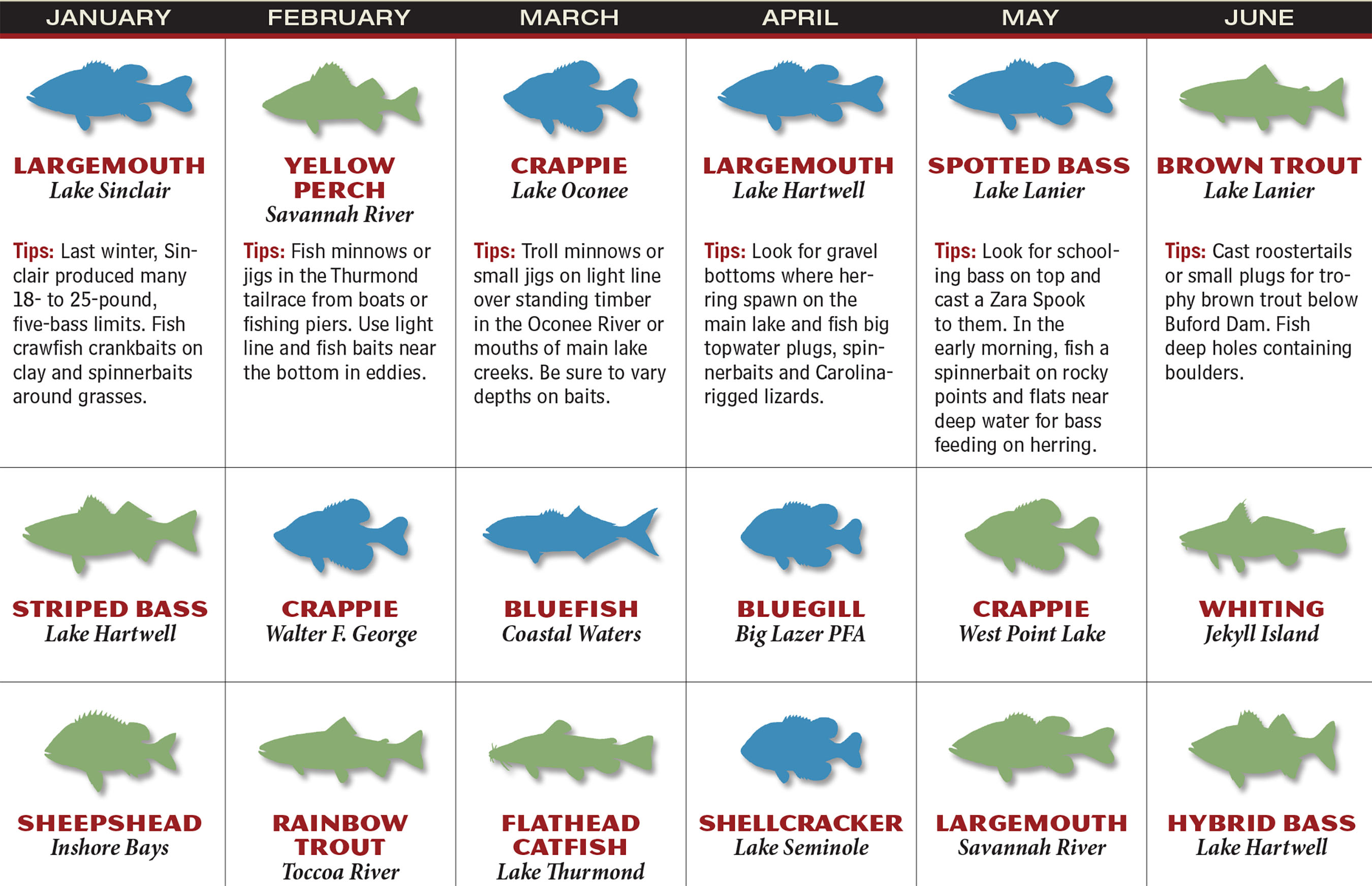 2017 georgia fishing forecast game fish