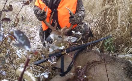 Bird Hunting Dog 2