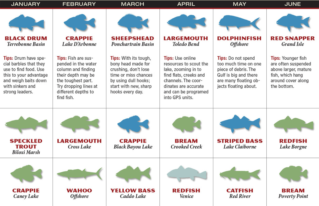 LA Fishing Forecast Calendar P1