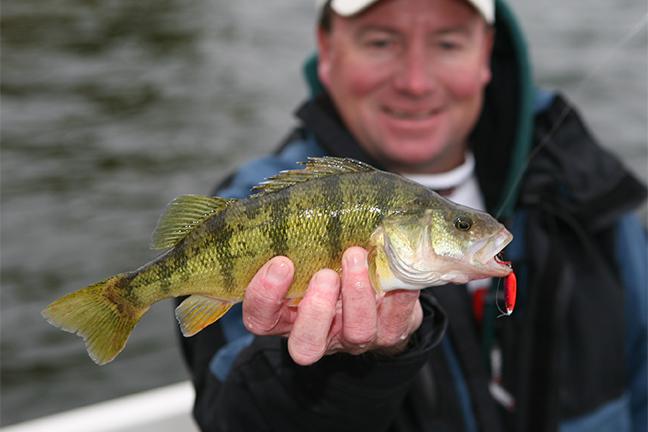 2017 Michigan Fishing Forecast