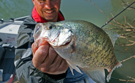 MO Fishing Forecast Feature