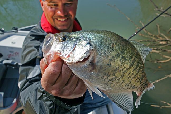 MO Fishing Forecast Feature