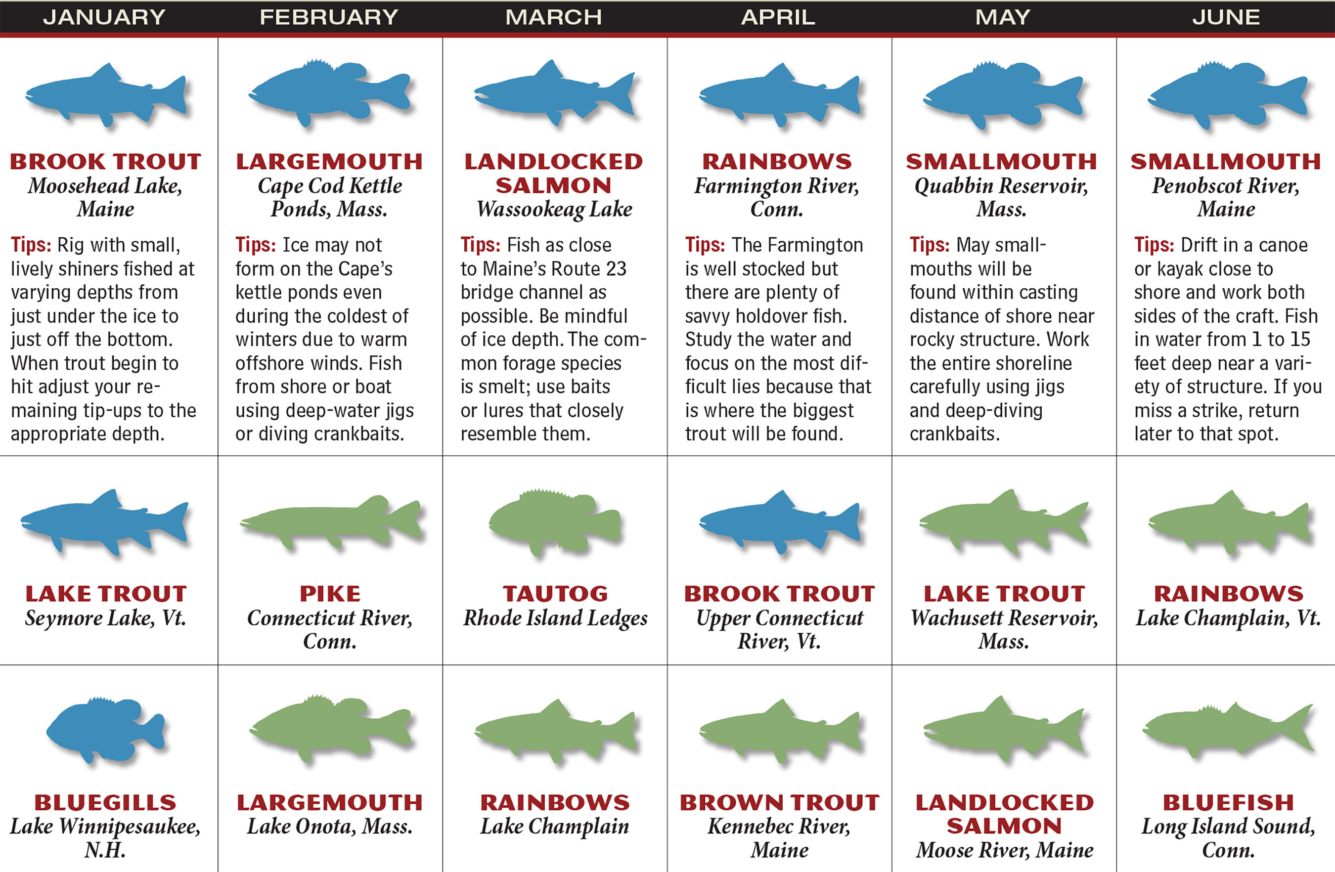 NG Fishing Forecast Calendar P1
