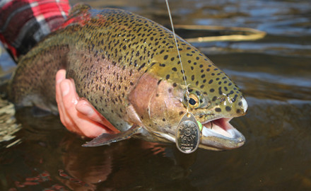 The Keystone State has much to offer anglers, and many places to fish successfully. The action