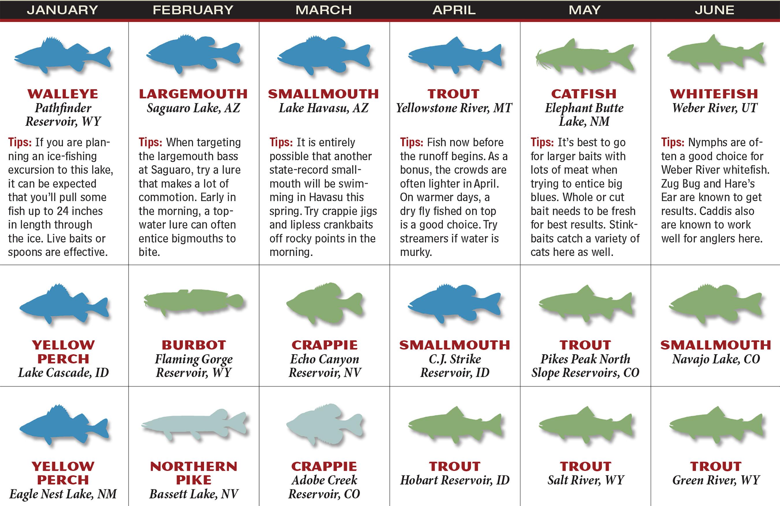 RM Fishing Forecast Calendar P1
