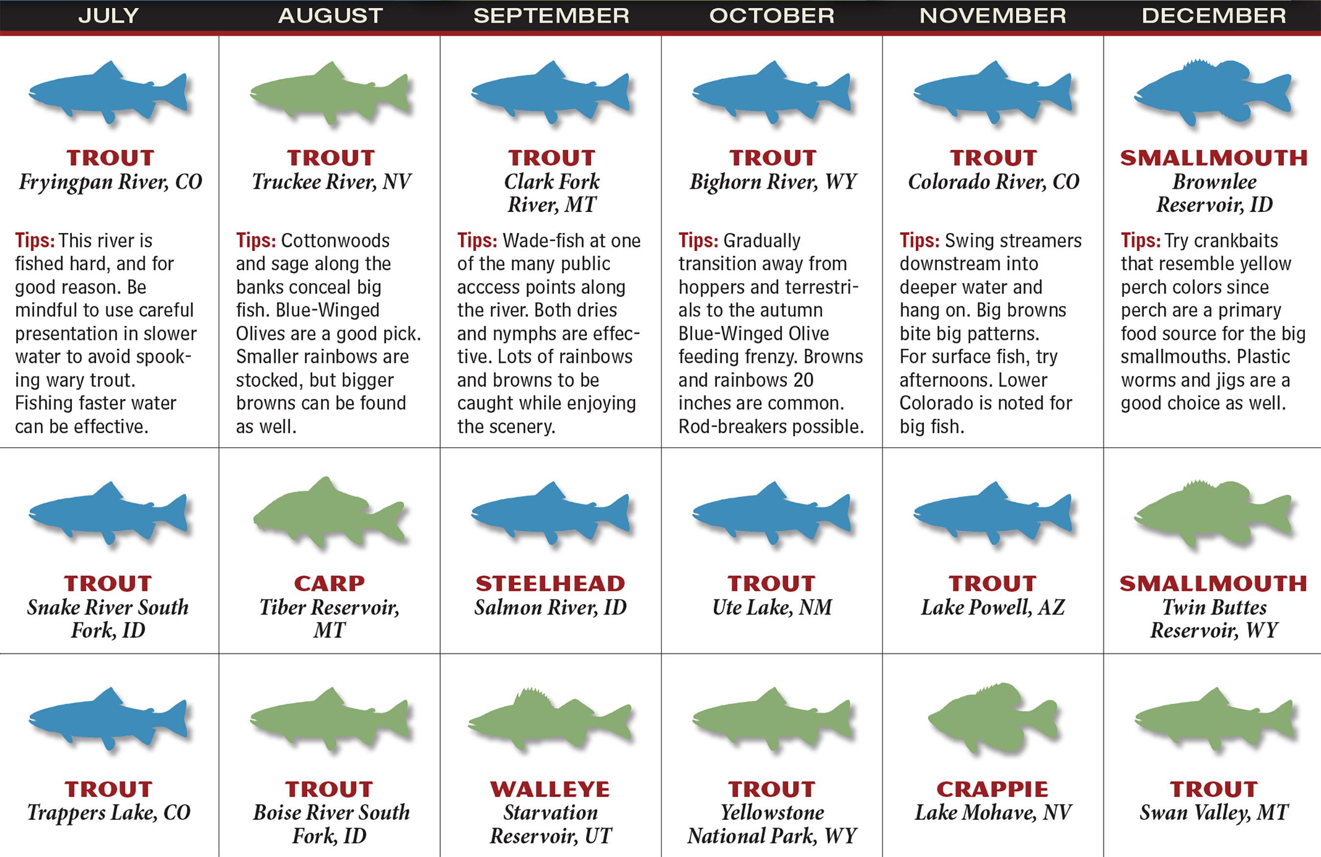 RM Fishing Forecast Calendar P2