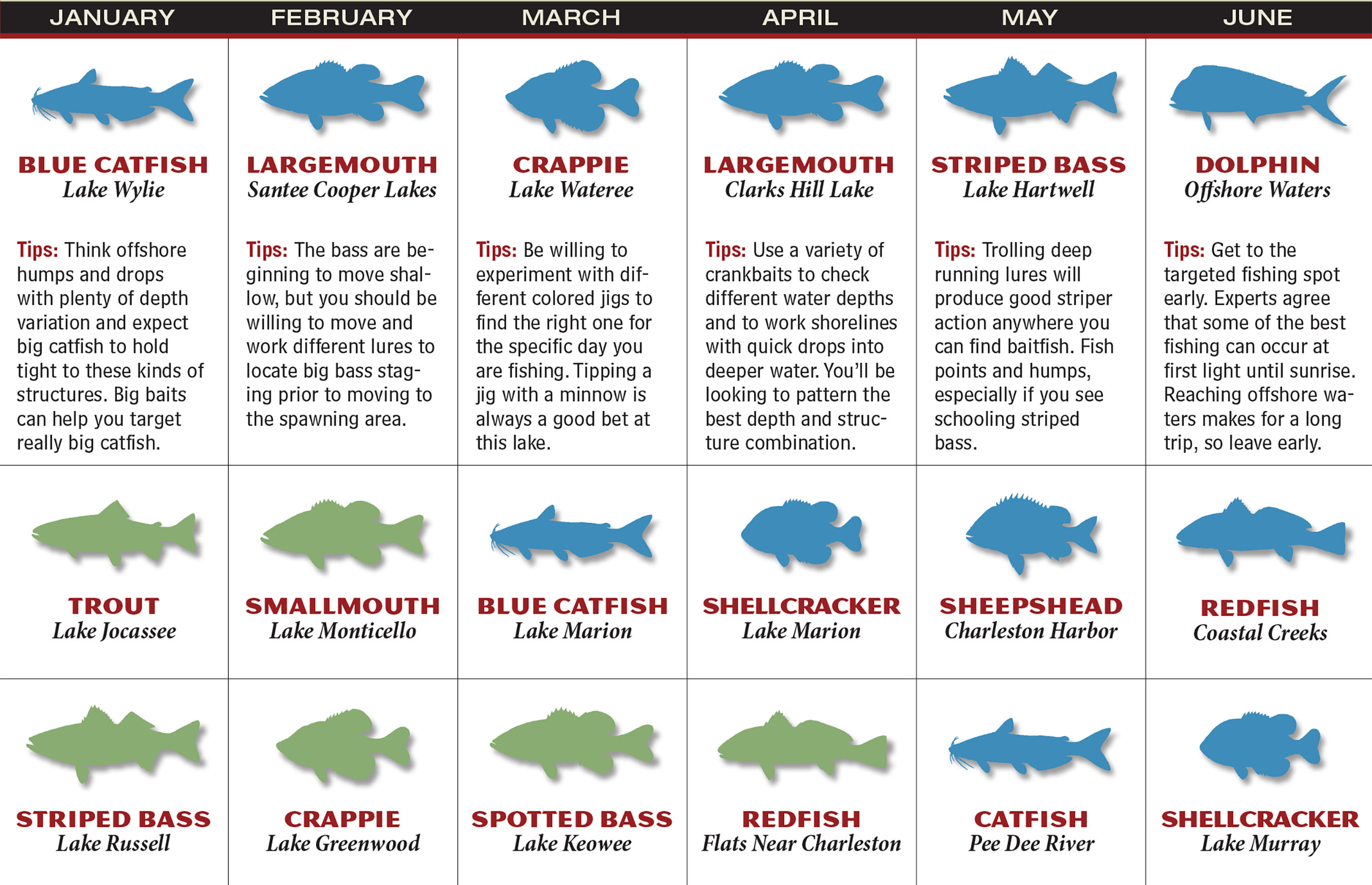 SC Fishing Forecast Calendar P1