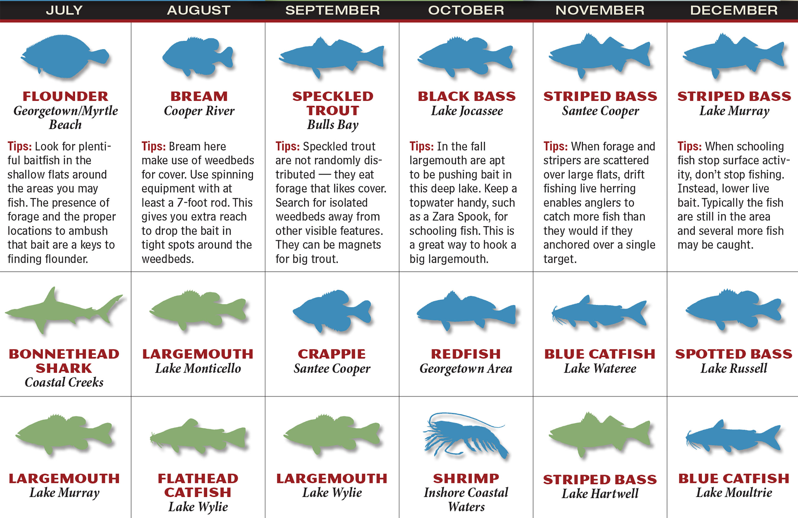 2017 south carolina fishing forecast game fish for Best time to fish calendar
