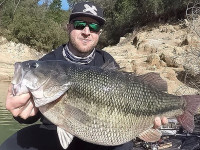 world record spotted bass