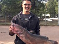 state record catfish