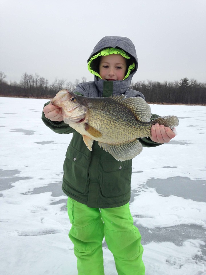 Holy crappie game fish for Crappie ice fishing