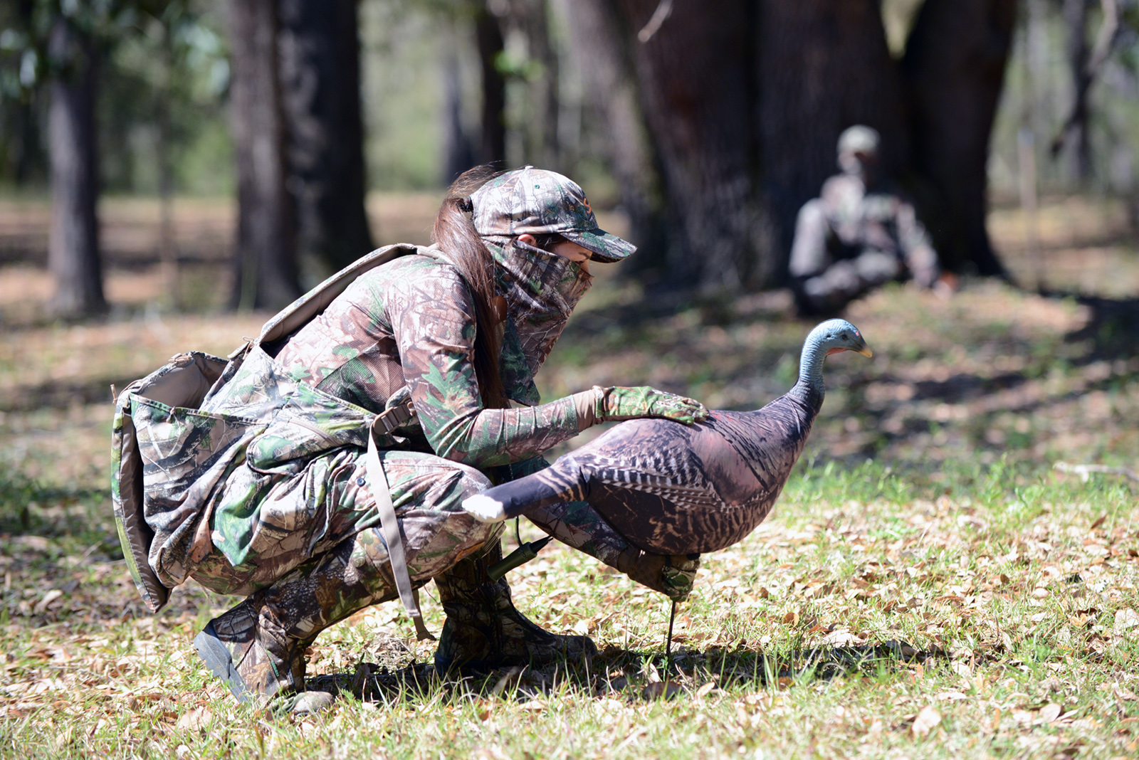 Hunting Season Opens for Florida Osceola Turkey