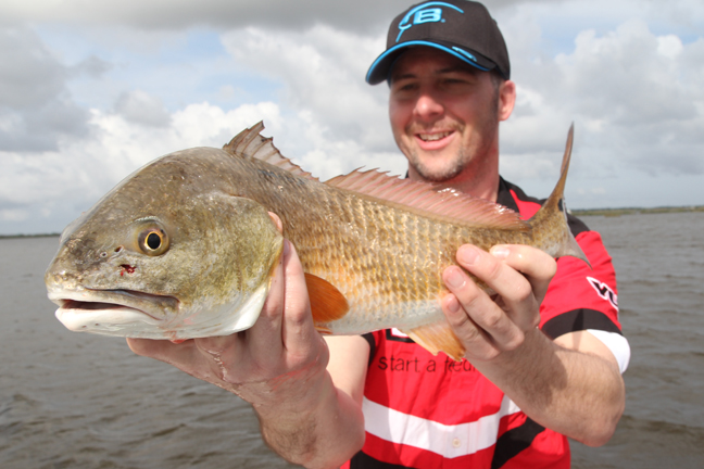 Gulf Coast Redfish 1