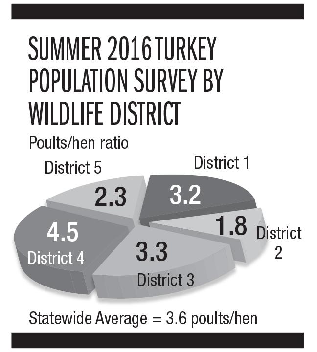 Ohio Turkey Forecast