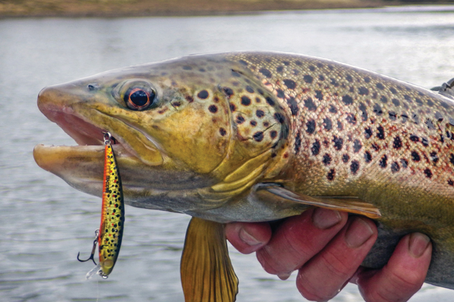 Trout Fishing With Crankbaits