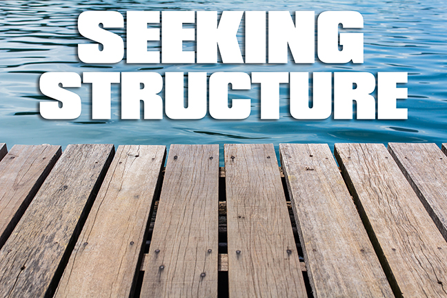 Bass Fishing Seaking Structure Lead 1