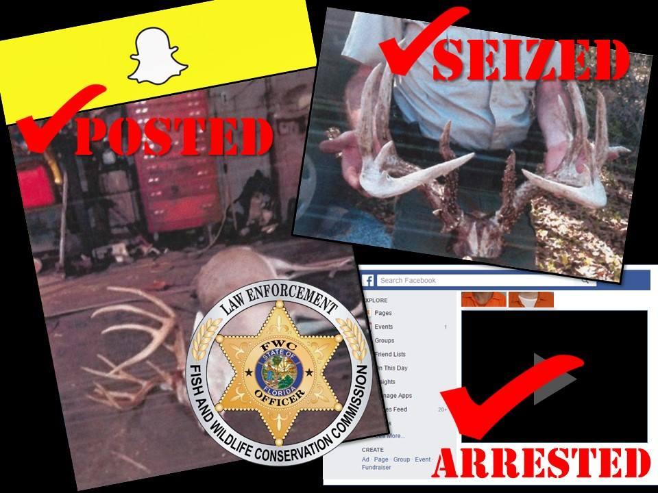Fla. Deer Poachers Incriminate Themselves on Social Media