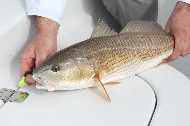 Florida Family Fishing