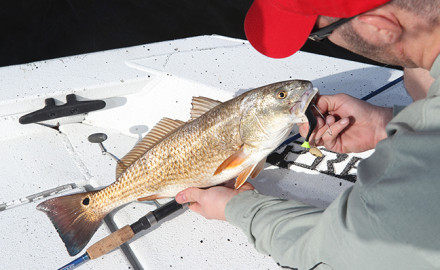 Texas offers plenty of great fishing waters, and most anglers have their favorite spots to cast for