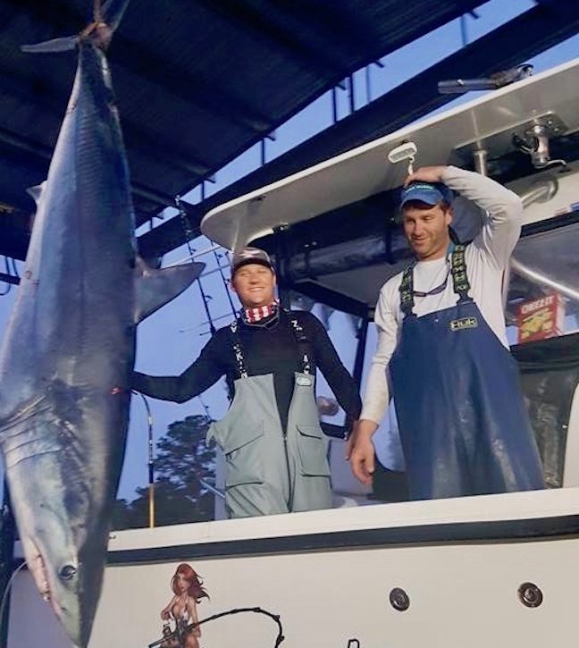 record mako shark