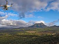elk survey