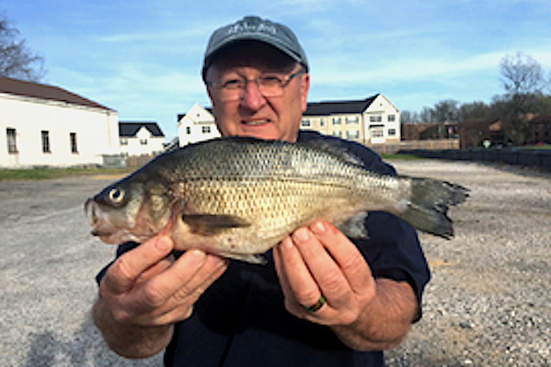 State Record Catches Reported in Maryland, N.D.