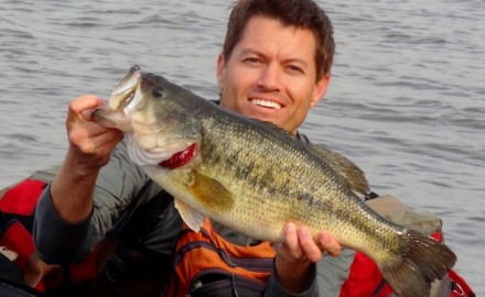Transition bass are shifting from shallow spawning areas to deeper haunts in places like