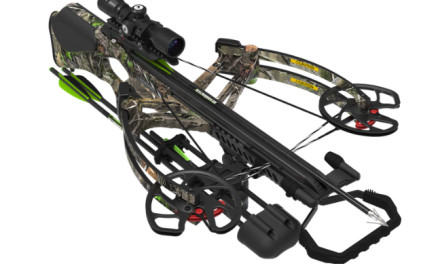new crossbow