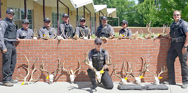 N m game wardens seize 17 illegal animal heads game fish for New mexico department of game and fish