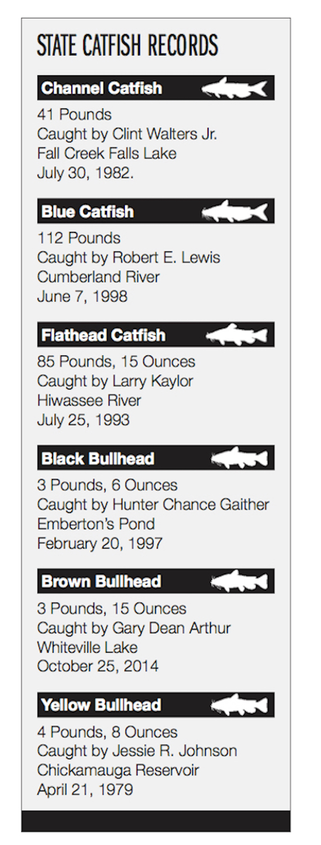 Summer Hot Spots for Tennessee Catfish