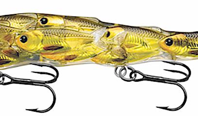 walleye gear