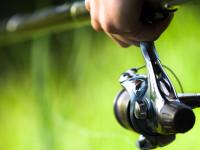 New Mexico fishing