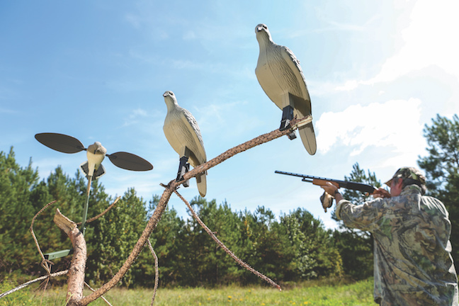 Decoying Doves: Bring Duck Tactics To Your Next Hunt