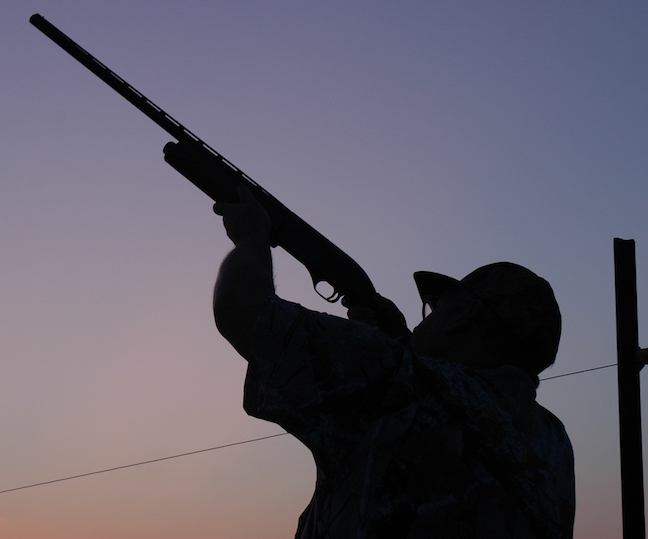 dove hunting mistakes