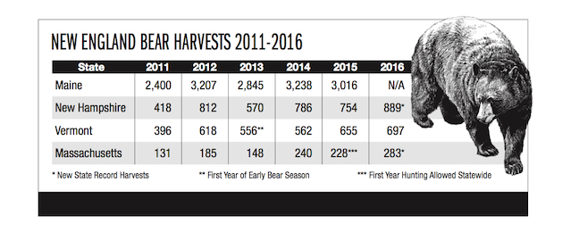 New England Bear Hunting Forecast 2017