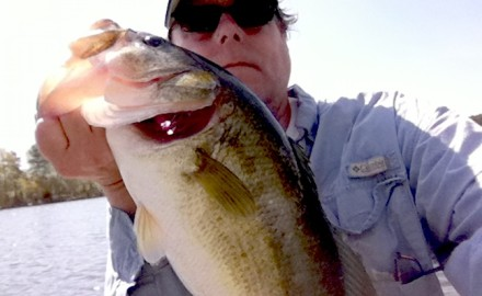 These are some of South Carolina's best fall bass fishing locations.  By Terry Madewell  Fall