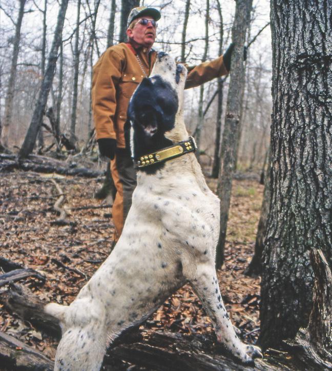 pleasure Hunting sport or