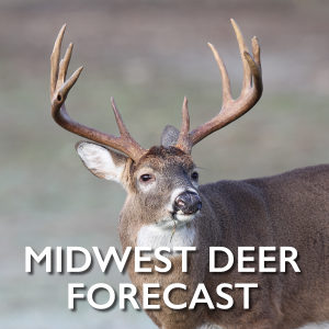 MidWest-Deer-Forecast