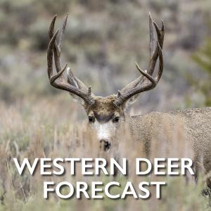 Western-Deer-Forecast