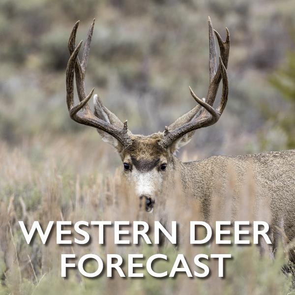 2017 Game & Fish Deer Forecasts