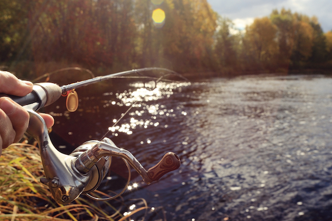 5 top fall fishing trips in illinois game fish for Illinois game and fish