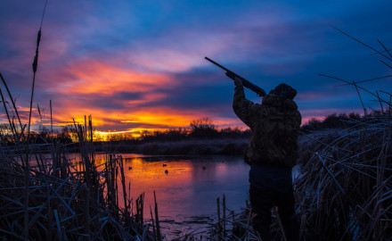 There's plenty of action for Missouri early waterfowlers before autumn's main events.