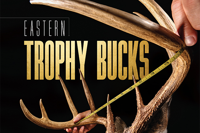 Eastern Trophy Bucks