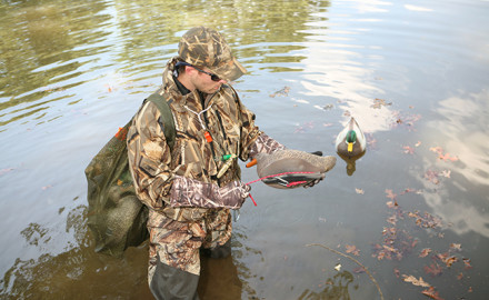 With excellent habitat and some cold weather up north, Kentucky hunters should enjoy some good waterfowl hunting this fall.